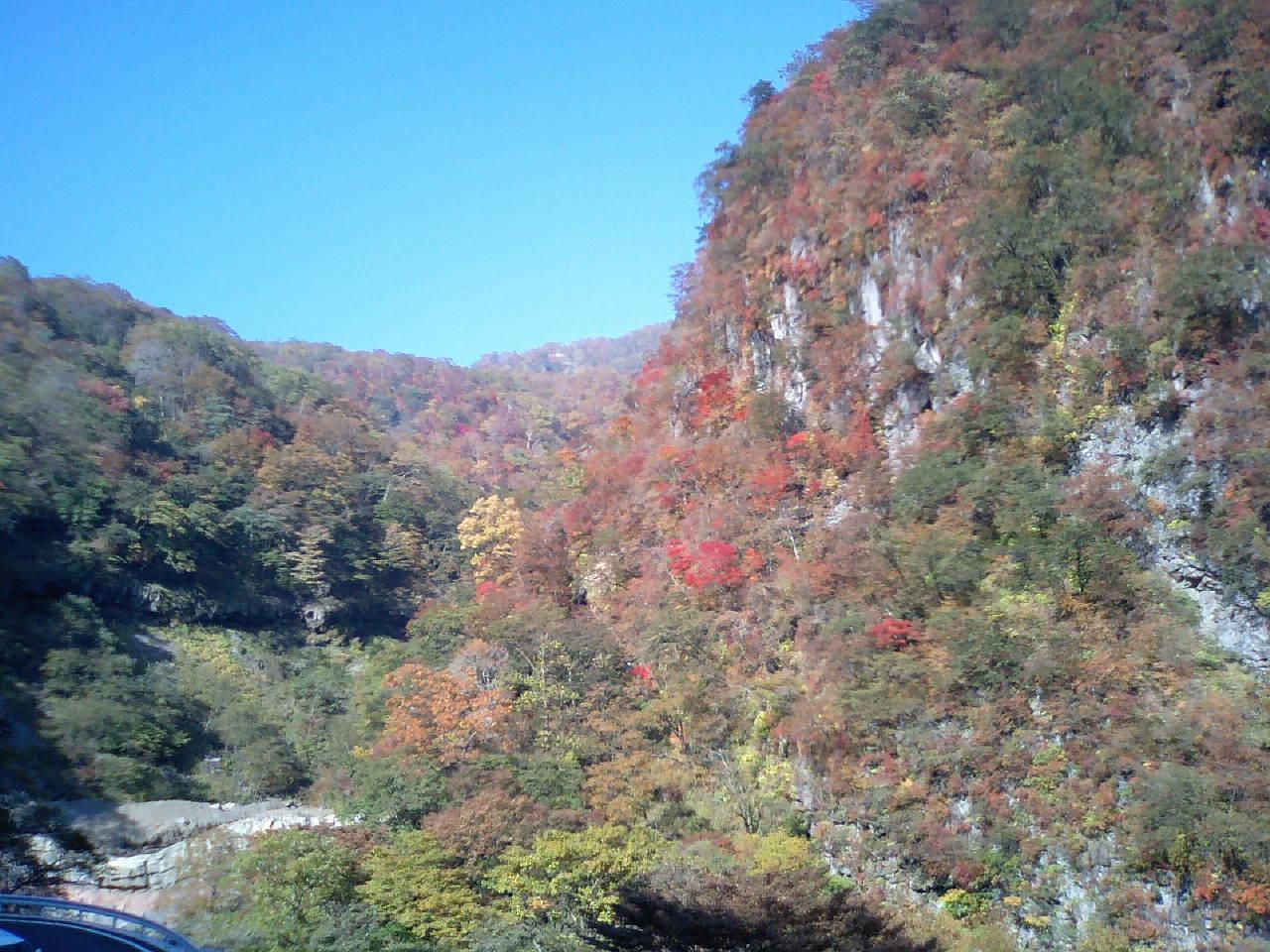 秋を感じに日光